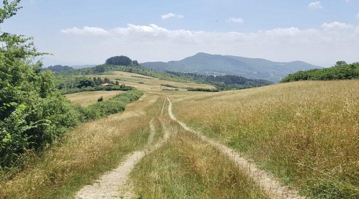 Via degli Dei tappa 5: laggiù c'è Firenze!