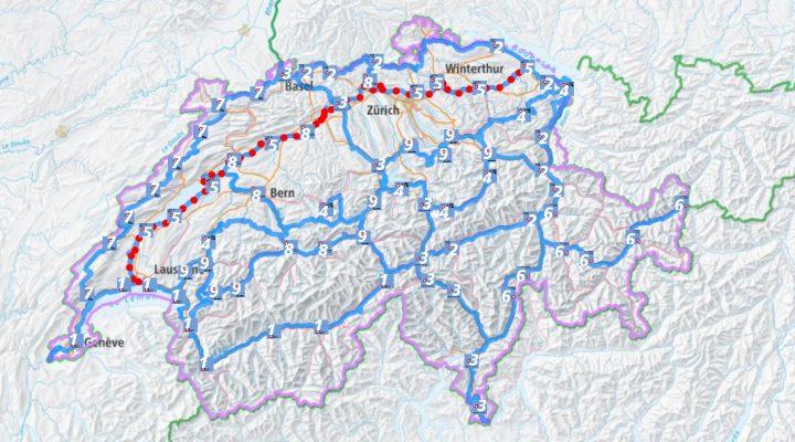 Tre pigri in Svizzera